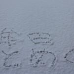 【大牟田 初雪】雪が降り積もりましたー!市民の方の反応も。