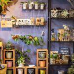 【DOUBLE】植物×雑貨でおしゃれなインテリアを!インスタ映えする店(福岡県みやま市)