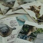 大牟田市動物園を紹介する「ケモノート」が好評により販売開始されています!