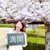 大牟田の桜開花情報!諏訪公園に行ってきました【OMUTA VOGUE】