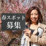 【募集】あなたの好きな大牟田の春スポット教えてください!