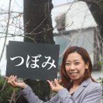 【大牟田】桜の開花状況をチェックしてきました!『2017年3月23日』
