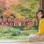 みやま市清水寺の紅葉が間もなく見頃!大牟田から車で30分以内のスポット