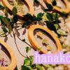 『hanako花展』へ行ってきました!大正町の『you』で12月9日まで開催中