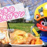 Mr.kitchenのハンバーガーを持って大牟田川へお花見に行ってきました!【読者さん企画】