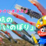 【大牟田観光スポット】春・GWのお出かけに!こいのぼりを見に行きませんか?