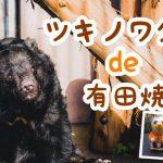 【大牟田イベント情報】ツキノワグマde有田焼【大牟田市動物園】