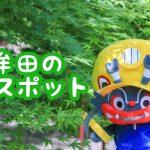 大牟田の観光名所『普光寺』で新緑を探してきました!