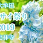 アジサイ祭り2019と朗読会が定林寺(大牟田市)で開催されます