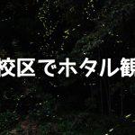 【大牟田イベント情報】玉川校区でホタル観賞会(2019年5月25日)