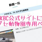 KBC公式サイトに大牟田市動物園のコーナー『ガマダセ動物園』専用ページ!
