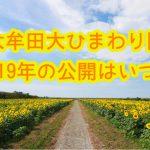 【10月10日更新】大牟田大ひまわり園2018年の一般公開はいつから?(大牟田市健老町)