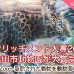 大牟田市動物園がエンリッチメント大賞2019で大賞『インパクト賞』を受賞!