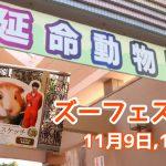 大牟田市動物園でズーフェス開催!【11月9日・10日】映画いのちスケッチ公開記念企画も実施中