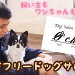 大牟田のドッグサロン「 Øchoir(ゼロ クワイア)」が愛犬家に大人気な理由【PR】