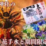 SNS映えする大牟田神社の花手水と大蛇山御朱印【期間限定】が人気!