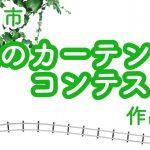 大牟田市が緑のカーテンコンテストを実施!自宅や会社に設置してみませんか?
